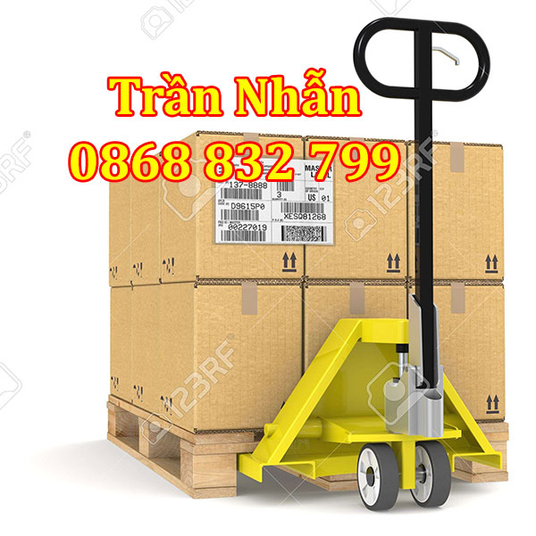Xe nâng tay thấp nhập khẩu tại Việt Nhật